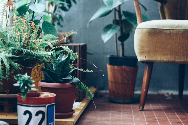 Green living Altholz Wanddekor